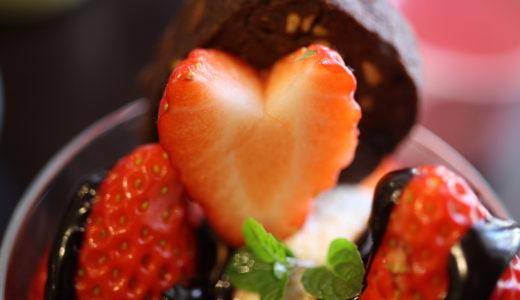 名古屋市千種区「ベジキッチン・グーグー」で感動のパフェとケーキ